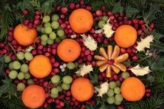 Fondo de la fruta de la Navidad Imagen de archivo libre de regalías