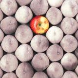 Fondo de la fruta del melocotón y de la manzana Destaqúese en la muchedumbre Imagen de archivo libre de regalías