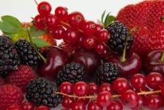 Fondo de la fruta del verano Fotografía de archivo