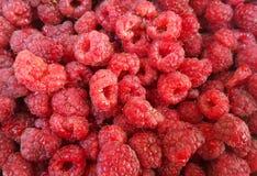 Fondo de la fruta de la frambuesa Fotos de archivo