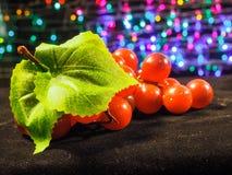fondo de la fruta de la uva fotografía de archivo libre de regalías