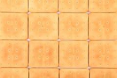 Fondo de la galleta de soda del saltine. Fotos de archivo libres de regalías