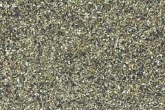 Fondo de la harina de algas Imagenes de archivo