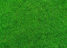 Fondo de la hierba Fotos de archivo
