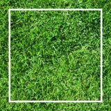 Fondo de la hierba verde Bandera del fútbol Imágenes de archivo libres de regalías