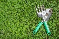 Fondo de la hierba verde de la herramienta de la planta Imagenes de archivo