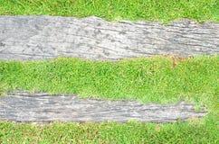 Fondo de la hierba verde y del registro imagen de archivo libre de regalías