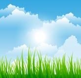 Fondo de la hierba y del cielo stock de ilustración