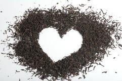 Fondo de la hoja de té Fotografía de archivo