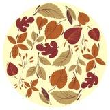 Fondo de la hoja del otoño Imagen de archivo