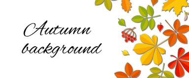 Fondo de la hoja del otoño que cae Imagen de archivo