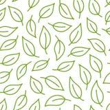 Fondo de la hoja Modelo inconsútil verde, blanco con las hojas en la línea mínima estilo del garabato Paquete decorativo de la re ilustración del vector