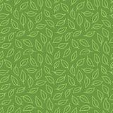 Fondo de la hoja Modelo inconsútil verde con las hojas en la línea mínima estilo del garabato Contexto decorativo del paquete de  libre illustration