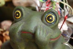 Fondo de la imagen del color verde de la rana foto de archivo