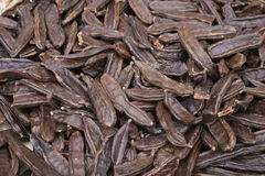 Fondo de la langosta marrón para la venta Fotografía de archivo libre de regalías
