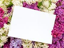 Fondo de la lila con la invitación foto de archivo libre de regalías