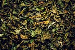 Fondo de la macro del té de la hierbabuena imágenes de archivo libres de regalías