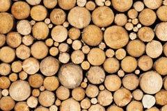 Fondo de la madera del pino Imágenes de archivo libres de regalías