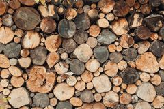 Fondo de la madera derramada redonda Imágenes de archivo libres de regalías