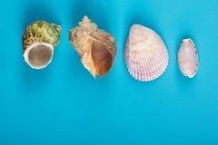 Fondo de la maqueta de las vacaciones del mar del verano Página en blanco del cuaderno con los artículos del viaje en la tabla az Fotos de archivo libres de regalías