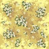 Fondo de la margarita Imagen de archivo