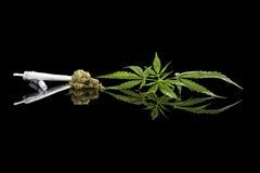 Fondo de la marijuana foto de archivo