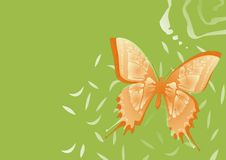 Fondo de la mariposa Fotos de archivo libres de regalías
