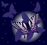 Fondo de la mariposa de la noche stock de ilustración