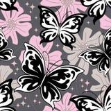 Fondo de la mariposa de la noche Foto de archivo libre de regalías