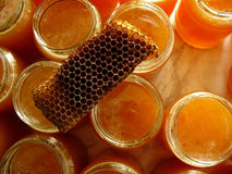 Fondo de la miel Foto de archivo