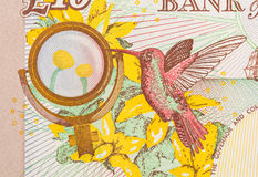 Fondo de la moneda de la libra - 10 libras Imagen de archivo libre de regalías