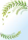 Fondo de la naturaleza Ilustración del Vector