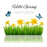 Fondo de la naturaleza de la primavera con la hierba verde, flores y una mariposa stock de ilustración
