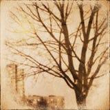 Textura del papel del Grunge. fondo abstracto de la naturaleza Foto de archivo libre de regalías