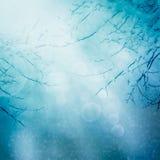 Fondo de la naturaleza del invierno de la frontera Imagen de archivo libre de regalías