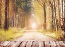 Fondo de la naturaleza del otoño con la terraza de madera fotografía de archivo libre de regalías