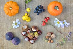 Fondo de la naturaleza del otoño con las frutas y las castañas Foto de archivo