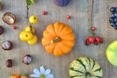 Fondo de la naturaleza del otoño con las frutas y las castañas en textura de madera Imagen de archivo libre de regalías