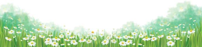 Fondo de la naturaleza del verano del vector ilustración del vector