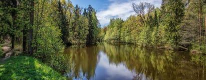 Fondo de la naturaleza - panorama del waterscape del lago - parque - bosque en St Petersburg, Rusia Imágenes de archivo libres de regalías