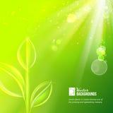 Fondo de la naturaleza para el diseño del verano. Imagenes de archivo