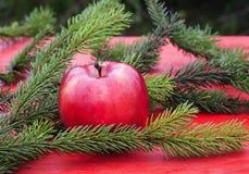 Fondo de la Navidad de Apple rojo maduro en la tabla entre GR Fotos de archivo libres de regalías