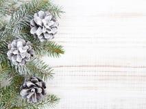 Fondo de la Navidad con la decoración con los conos y las ramitas Foto de archivo libre de regalías