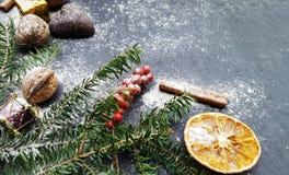 Fondo de la Navidad con el árbol de abeto de la nieve, las nueces y los panes de jengibre Fotografía de archivo libre de regalías