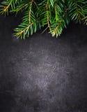 Fondo de la Navidad con el árbol de abeto en tablero del negro del vintage con Foto de archivo libre de regalías