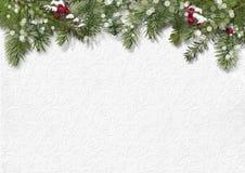Fondo de la Navidad con el acebo, abeto Fotos de archivo libres de regalías