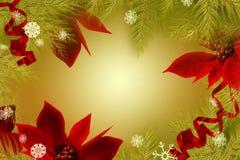 Fondo de la Navidad con el Poinsettia Imágenes de archivo libres de regalías