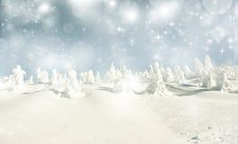 Fondo de la Navidad con las estrellas y los abetos nevosos Fotografía de archivo libre de regalías