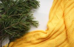 Fondo de la Navidad con las ramas del pino con agujas grandes y un suéter amarillo Primer de la visión superior Foto de archivo