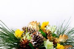 Fondo de la Navidad con las ramas del pino y los conos de abeto de oro Imagen de archivo